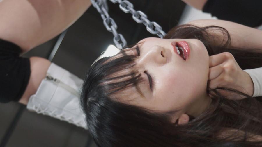 【HD】バトル2021福袋迎春特別ファイトセット【プレミアム会員限定】 サンプル画像08