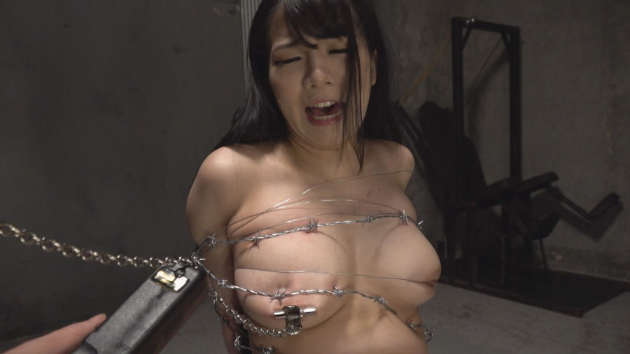 有刺鉄線拷問 サンプル画像06