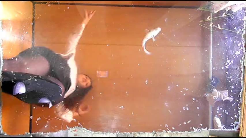 ニューフェイス・ミサト様のハイヒールがニシキゴイ・ザリガニ・ゴキブリを踏み潰す! サンプル画像02