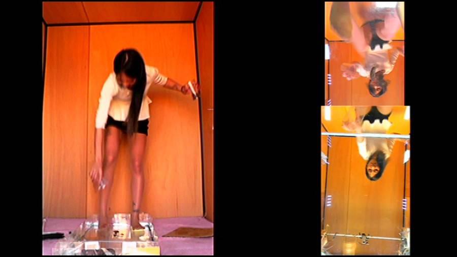 黒髪女性が生ストッキングで巨大ゴキブリを踏み潰す!-後編- サンプル画像04