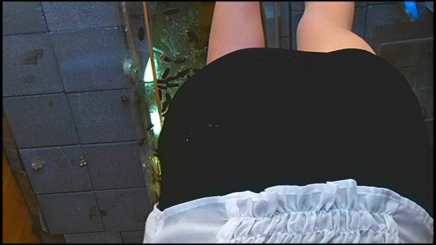 25cmパンプスの瑠伊様が巨大ゴキブリの大群をグチャグチャと踏み潰す!!-中編- サンプル画像01