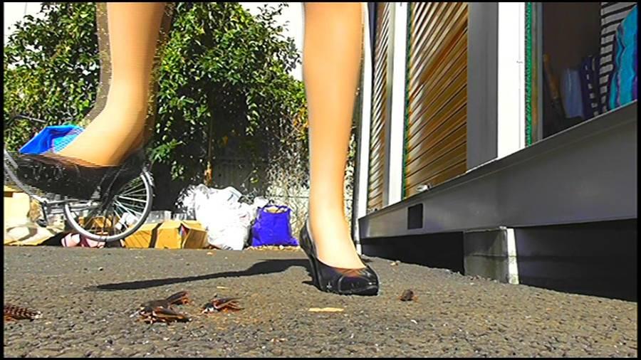 25cmパンプスの瑠伊様が巨大ゴキブリの大群をグチャグチャと踏み潰す!!-後編- サンプル画像05