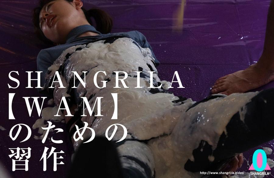 【HD】SHANGRILA 【WAM】のための習作 サンプル画像02