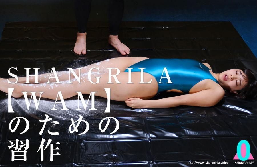 【HD】SHANGRILA 【WAM】のための習作 サンプル画像09