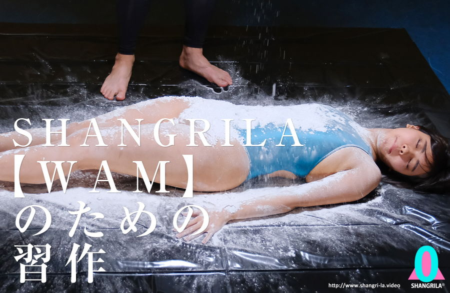 【HD】SHANGRILA 【WAM】のための習作 サンプル画像10