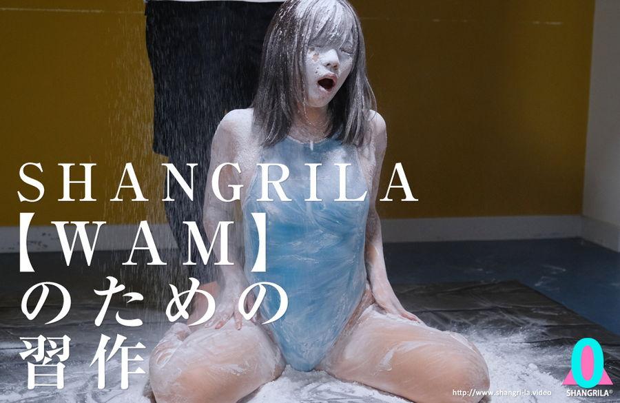 【HD】SHANGRILA 【WAM】のための習作 サンプル画像12