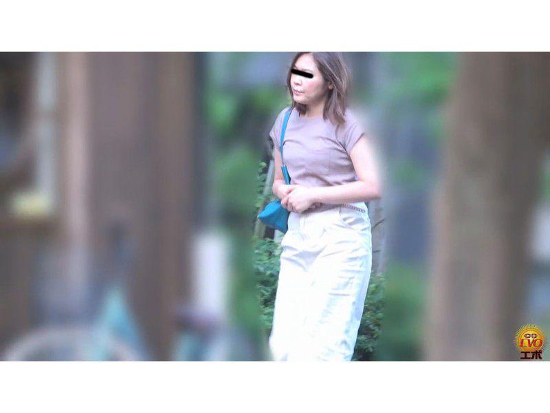 盗撮 公共トイレ利用中… 町中を駆ける限界女子の放屁放尿 サンプル画像13