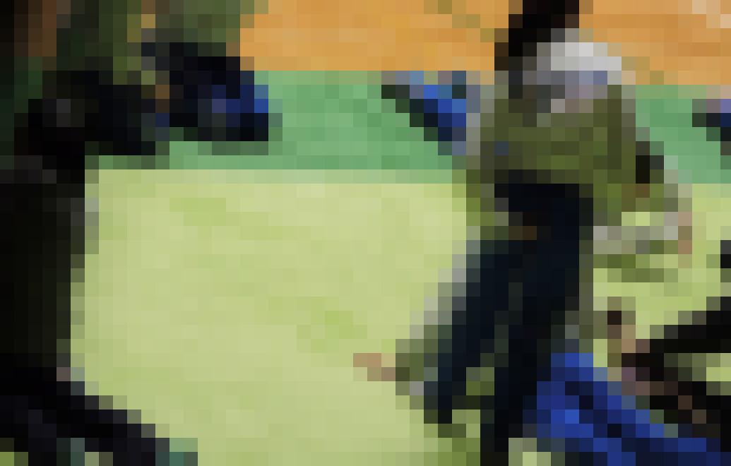 体操JK 体操競技選手権大会【動画】スポーツ編 3601~3603と3605~3607セット販売 サンプル画像4